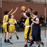 140326_Basket_fIMG_8566 copia