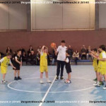 Basket 2 copia
