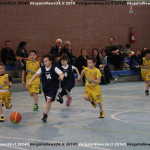 Basket_140326_IMG_8632 copia