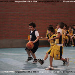 Basket_140326_IMG_8678 copia