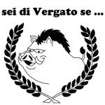 Logo ''Sei di Vergato Se...''