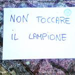 VN24_Vergato_Lampioni giardini-4