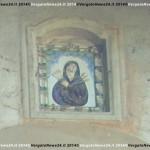 Giugno 2013  mici, Casoni- La Scola 159 copia