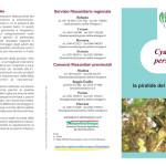 Piralide pieghevole.cdr