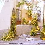 VN24_Dall'Olio_Fiori--02
