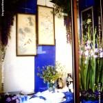 VN24_Dall'Olio_Fiori--08