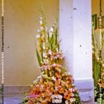 VN24_Dall'Olio_Fiori--11