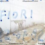 VN24_Dall'Olio_Fiori--12