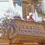 VN24_Dall'Olio_Fiori--15