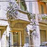 VN24_Dall'Olio_Fiori--16