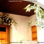 VN24_Dall'Olio_Fiori--18