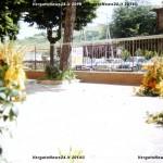 VN24_Dall'Olio_Fiori--19