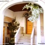 VN24_Dall'Olio_Fiori--20
