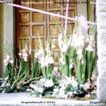 VN24_Dall'Olio_Fiori--30