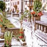 VN24_Dall'Olio_Fiori--32