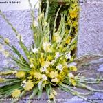 VN24_Dall'Olio_Fiori--37