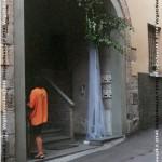 VN24_Franco Pezzulli_Fiori--01