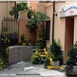 VN24_Franco Pezzulli_Fiori--04