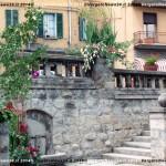 VN24_Franco Pezzulli_Fiori--06