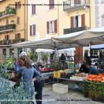 VN24_Mirella Rocchetti_Funghi-01