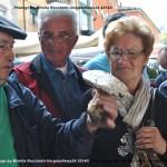 VN24_Mirella Rocchetti_Funghi-15