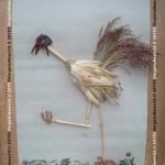 Silvano Monti_l'uccello pavaglione_01