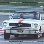 Vn24_Gozzoli_Mustang-01