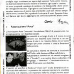150313_Pioppe_Quaresima-006 copia