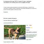 Cani abbandonati - 1
