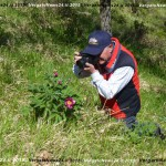VN24_Vergato_Peonie Monte Pero_Mauro Angela-62