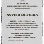 VN24_Fiera_San Benedetto copia