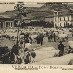 VN24_Asilo-e-Foro-Boario_05