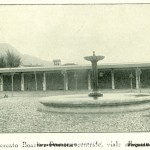VN24_Vergato 1930_Mercato Boar-3 (2) copia