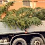 151202_VN24_Vergato_Albero Natale_02