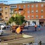 151202_VN24_Vergato_Albero Natale_04