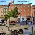 151202_VN24_Vergato_Albero Natale_05