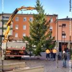 151202_VN24_Vergato_Albero Natale_09