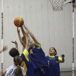 VN24_160121_Barbagallo s_Playbasket_003