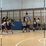 VN24_160121_Barbagallo s_Playbasket_004