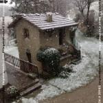 VN24_160320_Leggiadrina_02