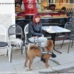 VN24_160329_Vergato_Pederzani G_Cadillac Bakery & Food_094