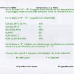 160402_Vergato_Catalogo mostra cunicola_ - 0005 copia