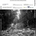 VN24_Paesaggio e memoria copia