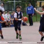 VN24_160503_Vergato_Polisportiva Flli Zanni_002