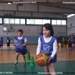 VN24_160510_Vergato_Play basket Monterenzio_005