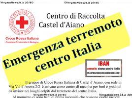 20160826_locandina donazioni terremoto copia