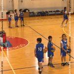 vn24_20161117_vergato_lay-basket_002