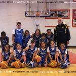 vn24_20161117_vergato_lay-basket_003