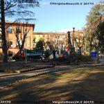 VN24_20171219_Vergato_Taglio alberi_002