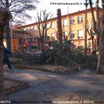 VN24_20171219_Vergato_Taglio alberi_003